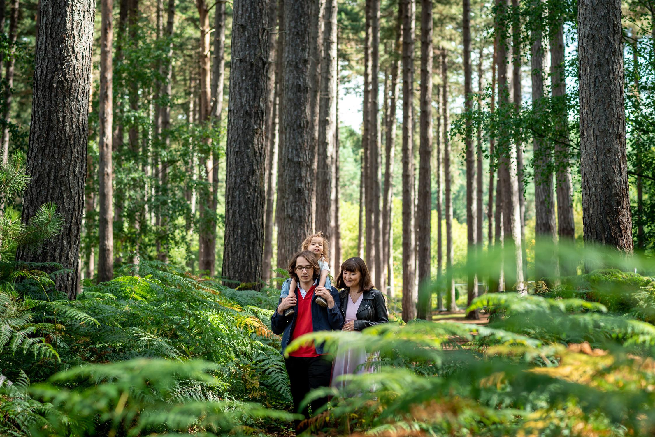 family walking in a field of ferns in Black Park